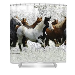 Horse Herd #3 Shower Curtain