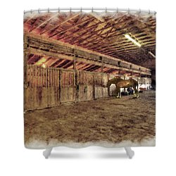 Horse In Barn Shower Curtain by Dan Friend