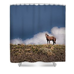 Shower Curtain featuring the photograph Horse In The Clouds  by Janis Knight