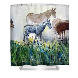 Horses In The Fog Shower Curtain
