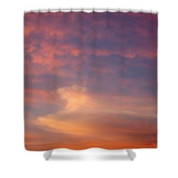Horse In The Sky Shower Curtain