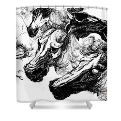 Horse Ink Drawing  Shower Curtain
