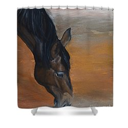 horse - Lily Shower Curtain by Go Van Kampen
