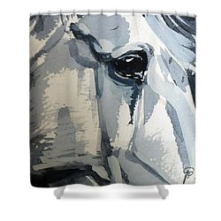 Horse Look Closer Shower Curtain