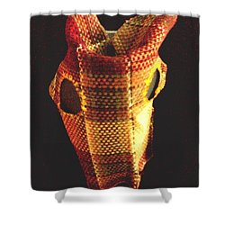 Native American Horse Mask Shower Curtain by Stacy C Bottoms