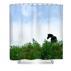 Shower Curtain featuring the photograph Horse On The Hill by Joan Davis