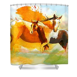 Horse Paintings 013 Shower Curtain by Catf