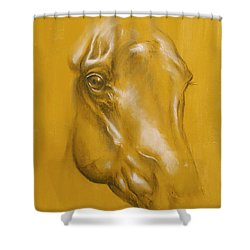 Horse Portrait Shower Curtain by Tamer and Cindy Elsharouni