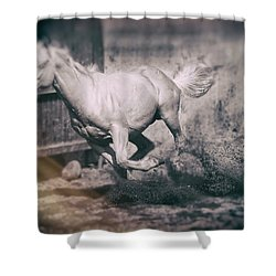 Horse Power Shower Curtain