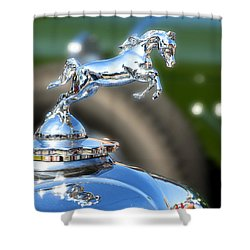 Shower Curtain featuring the photograph Horse Power by Rebecca Davis