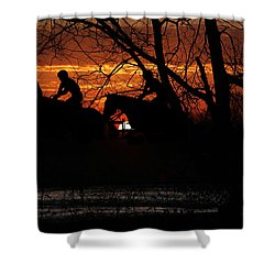 Horse Racing At Sun Downs - Featured In Comfortable Art And Nature Wildlife Groups Shower Curtain by EricaMaxine  Price