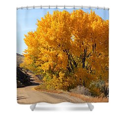 Horse Thief Canyon Gold Shower Curtain