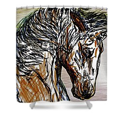 Horse Twins I Shower Curtain