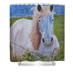 Horse With Stormy Skies Shower Curtain by Dawn Dreibus
