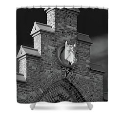 Horsehead   8256 Shower Curtain by Guy Whiteley