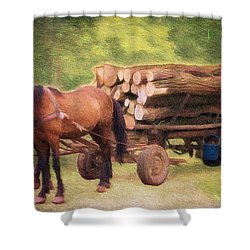 Horsepower Shower Curtain by Jeff Kolker