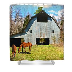 Horses Call This Old Barn Home Shower Curtain by Sandi OReilly