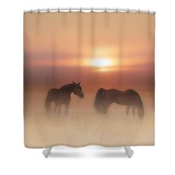 Shower Curtain featuring the painting Horses In A Misty Dawn by Valerie Anne Kelly