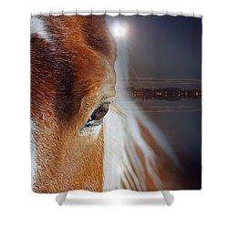 Horses  Shower Curtain by Mark Ashkenazi