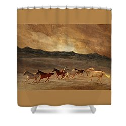 Horses Of Stone Shower Curtain