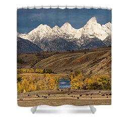 Horses On The Gros Ventre River Shower Curtain