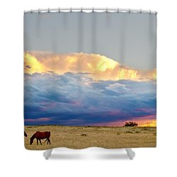 Horses On The Storm Shower Curtain by James BO  Insogna