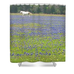Horses Running In Field Of Bluebonnets Shower Curtain