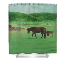 Horses Rural Pasture Western Landscape Original Oil Colorful Art Oregon Artist K. Joann Russell Shower Curtain by Elizabeth Sawyer