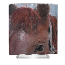 Horsin' Round A Bit Shower Curtain