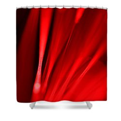 Hot Blooded Series Part 2 Shower Curtain by Dazzle Zazz