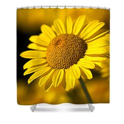 Hot In The Sun Shower Curtain by Joy Watson