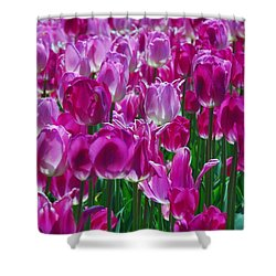 Hot Pink Tulips 3 Shower Curtain by Allen Beatty