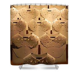Louis Vuitton Window Display Shower Curtain
