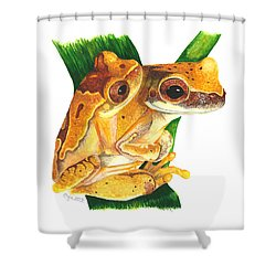 Hourglass Treefrog Shower Curtain by Cindy Hitchcock