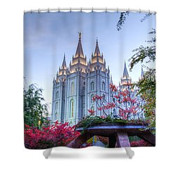 House Of The Lord Shower Curtain by Dustin  LeFevre