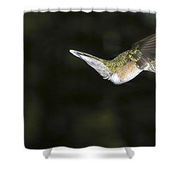 Hovering Beauty Shower Curtain