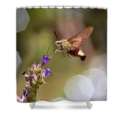 Hovering Pollination Shower Curtain