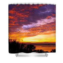 How Sweet The Sound Shower Curtain by Karen Wiles