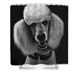 Howard Shower Curtain