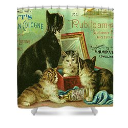 Hoyts Cats Shower Curtain by Georgia Fowler