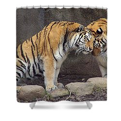Hugs And Kisses Shower Curtain by Frozen in Time Fine Art Photography