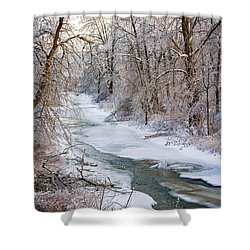 Humber River Winter Shower Curtain by Steve Harrington