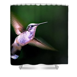 Hummer Ballet 1 Shower Curtain