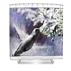 Hummer Feeding Shower Curtain by Susan Leggett