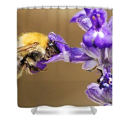 Shower Curtain featuring the photograph Humming Bee  by Stwayne Keubrick