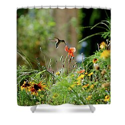 Shower Curtain featuring the photograph Humming Bird by Thomas Woolworth