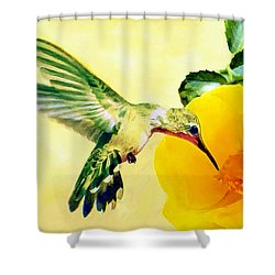 Hummingbird And California Poppy Shower Curtain by Bob and Nadine Johnston