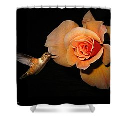 Hummingbird And Orange Rose Shower Curtain by Joyce Dickens