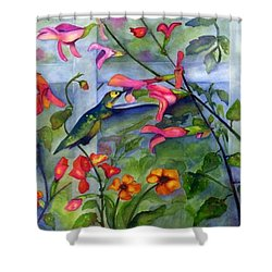 Hummingbird Dance Shower Curtain