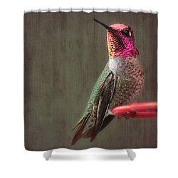 Hummingbird Flare Shower Curtain by Melanie Lankford Photography